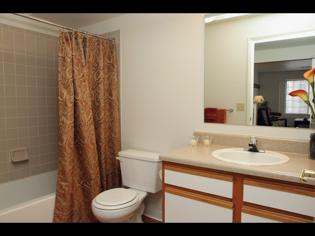 bathroom-model-apartment
